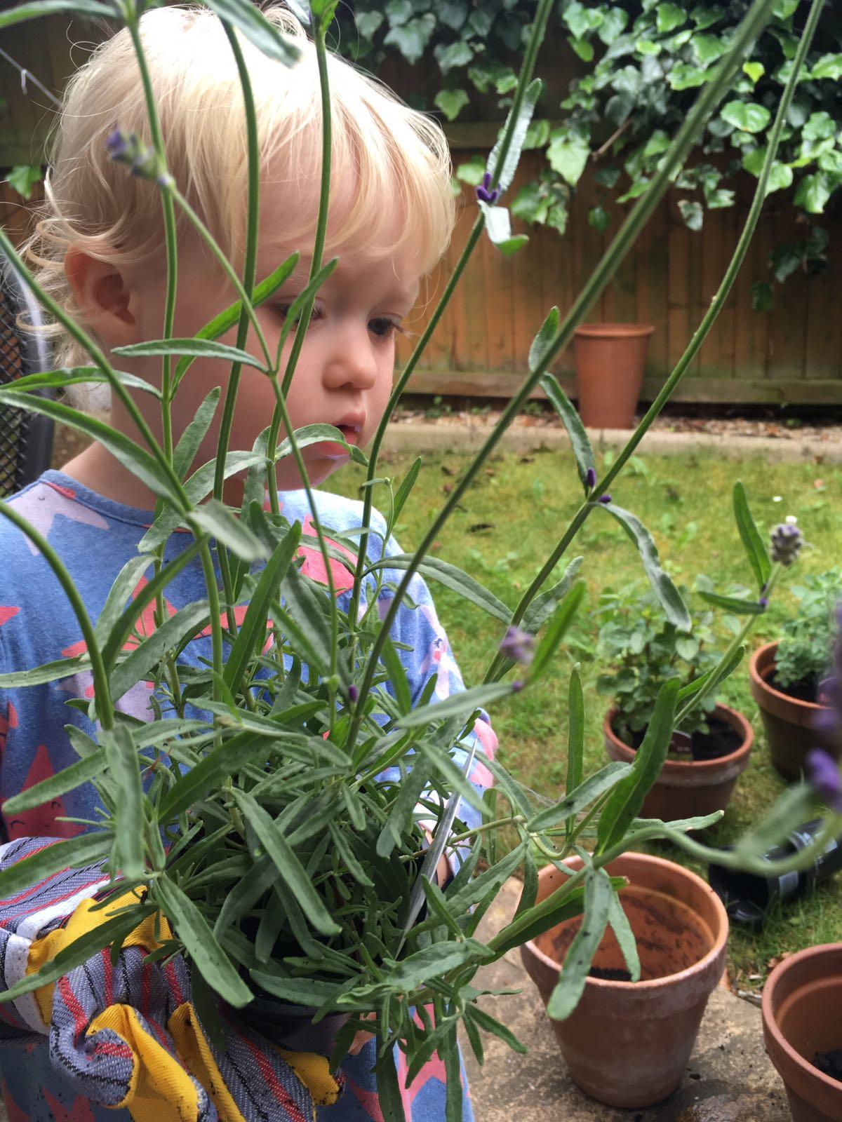 Gardening for preschoolers little gardener planting for Gardening tools preschool