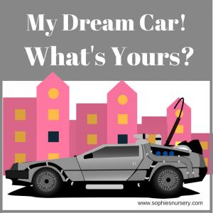 My Dream Rental Car