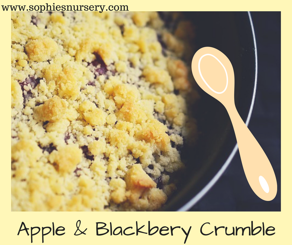 Simple and Delicious: Apple and Blackberry Crumble Recipe ...