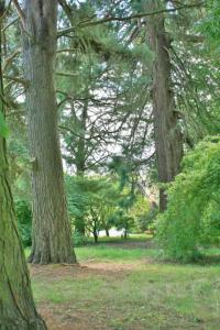 Batsford Arboretum Review