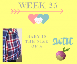 pregnancy update week 25