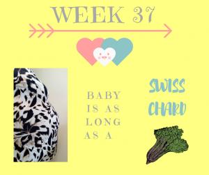 Pregnancy Update Week 37