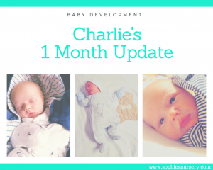 Baby Development At 1 Month Old: Charlies Monthly Update