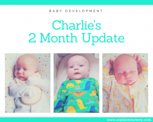 Baby Development at 2 Months Old: Charlie's Monthly Update