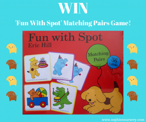 Fun With Spot Competition