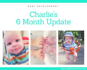 baby development at 6 months