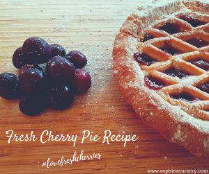 Fresh Cherry Pie Recipe #LoveFreshCherries