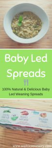 baby led spreads