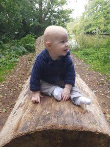 baby development at 8 months