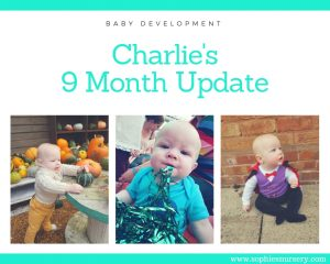 Baby Development at 9 Months