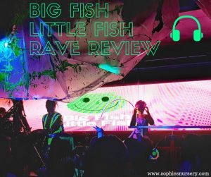 Big Fish Little Fish Rave