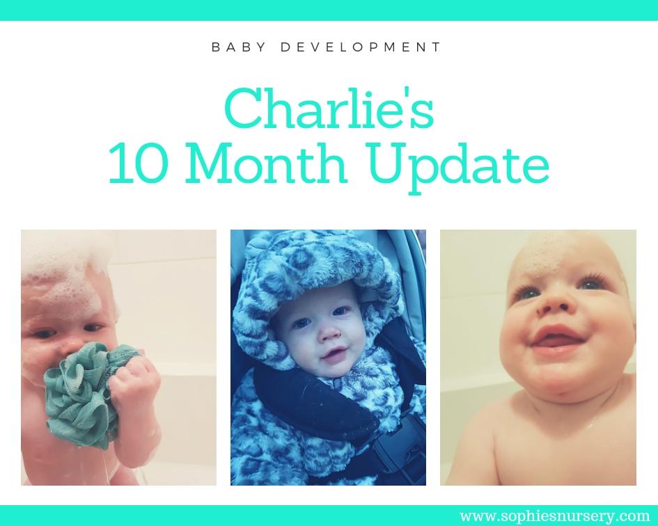 baby development at 10 months